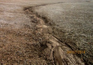 Erosion in Crop Field