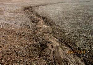 Erosion in Crop Field